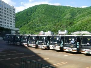我們的巴士隊~這裏還拍不全,總共17輛呢